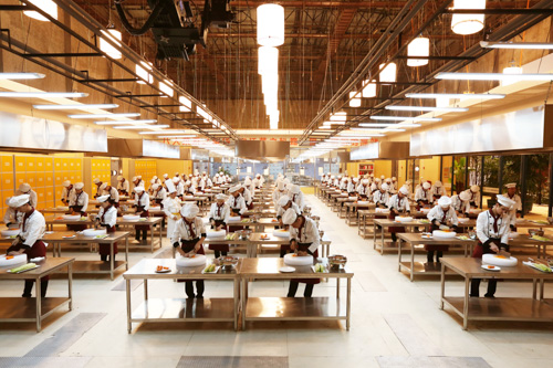 厨师学校报名时间